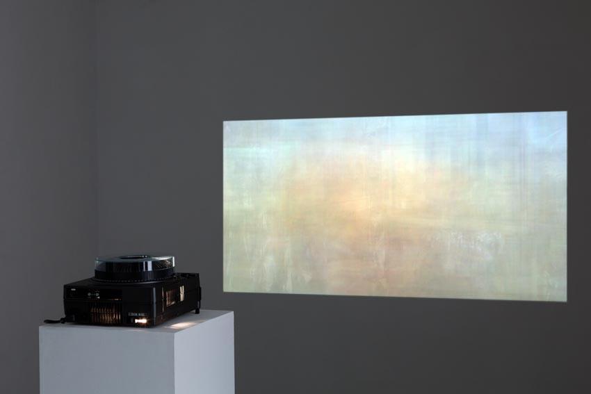 Tadzio Condensation 2013-2014
