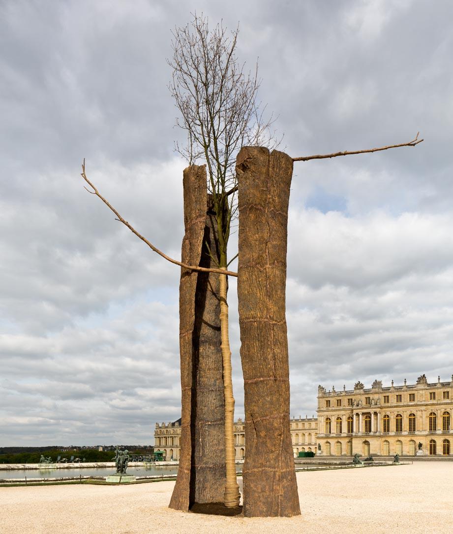 Versailles Penone
